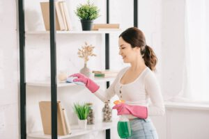 House cleaning Hernando